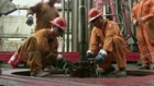 Saxo Bank: Olieprisen vil falde tilbage