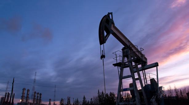 R�varer: Oliepris holder sig over 30 dollar pr. t�nde