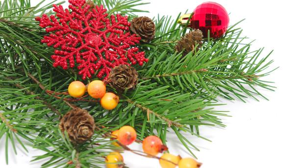 Julen er hjerternes fest - og l�nmodtagernes