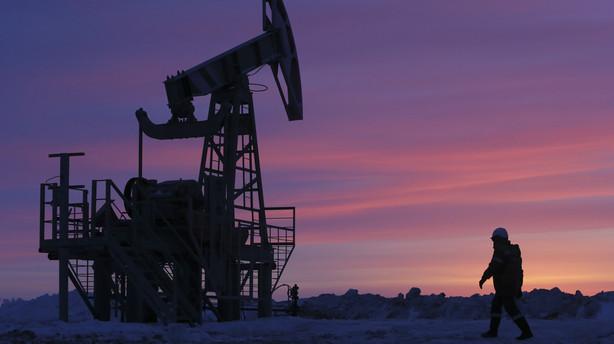 Lakmuspr�ve: Gr�n omstilling er oppe mod lav oliepris