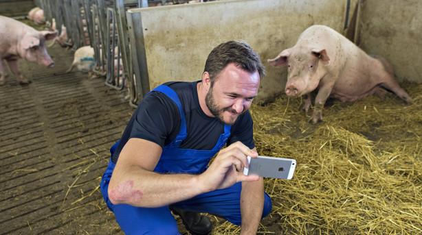 Debat: Landbruget har lidt under �koelskende ministre l�nge nok