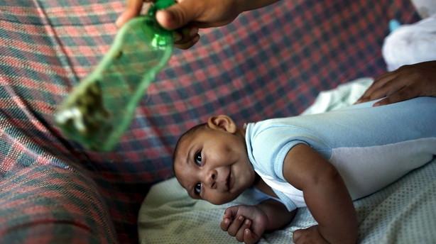 WHO's plan for zika-bek�mpelse koster 56 millioner dollar
