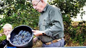 Ingeni�ren der blev dansk vinbonde