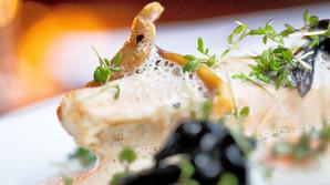 Noma-kok �bner for bl�d gastronomi til en billig penge