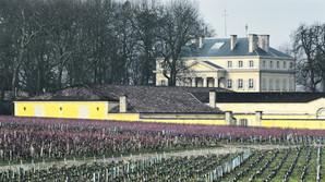 7000-kroners vin p� �kof�dder