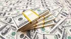 �konomer jubler: Dollar over 7 kr er en gave