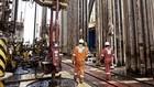 Michael Pram: Lav oliepris v�kker naturlig bekymring