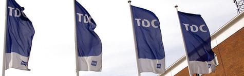 TDC-direkt�r h�ndplukket til hollandsk topjob