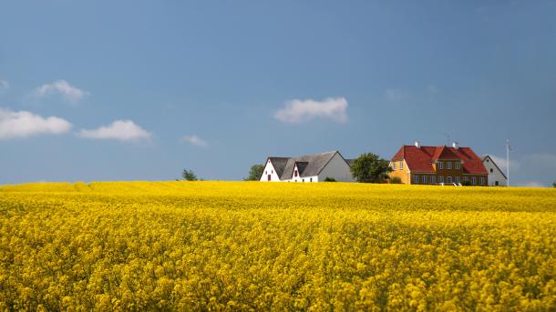 Nu kan du nemmere låne til et hus på landet: Bolig