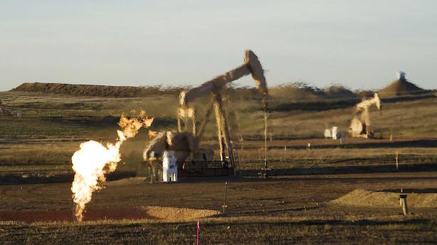 Råvarer: Olie viger en anelse efter toårigt toppunkt