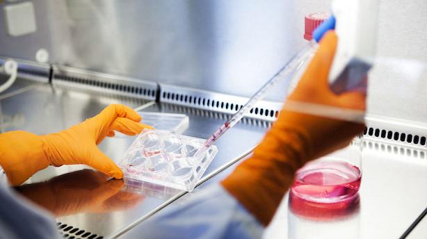 Bavarian starter forsøg med nyt kræfthåb