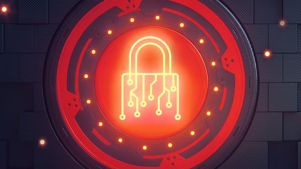 Forsikringsselskab gør cybersikkerhed til en styrkeposition