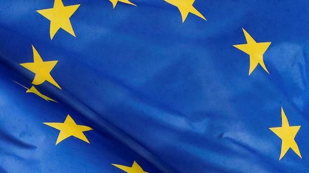 EU-ledere vil arbejde for klimaneutralitet i 2050