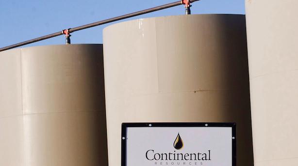 Opec hæver efterspørgselsprognose og olieprisen stiger