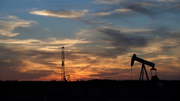 Olie har kurs mod længste periode med ugentlige stigninger siden 2017