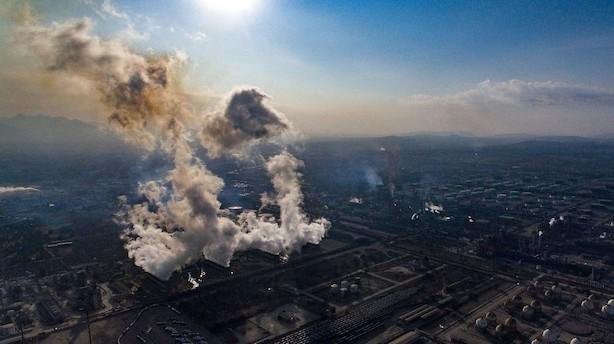 Råvarer: Oliepriserne retter sig efter fald