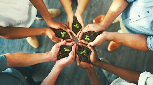 Verdens topledere vægter bæredygtig vækst over bundlinje