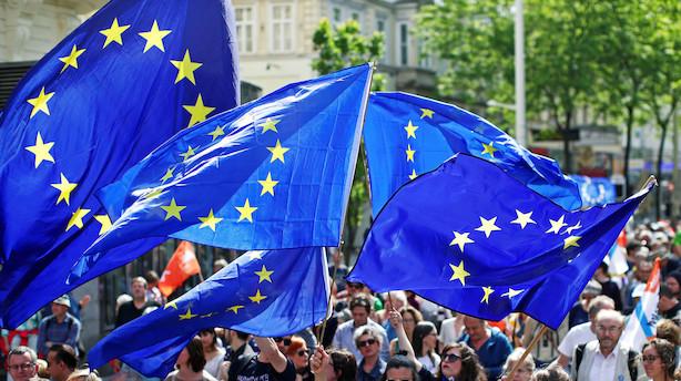 Skandinaviske politikere i opråb: Vi skal turde at gå over grænser til valgene