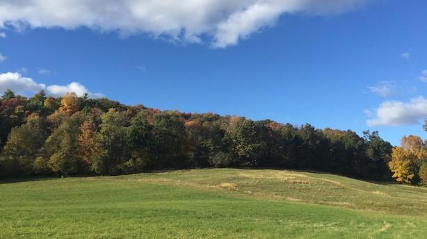 Efterårets farver forfører i Upstate New York