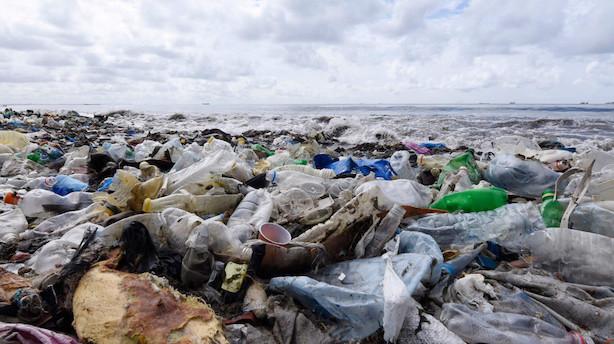 New Zealand forbyder plastikposer i kamp for bedre miljø