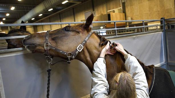 160 år gammelt hesteforsikringsselskab får byge af påbud