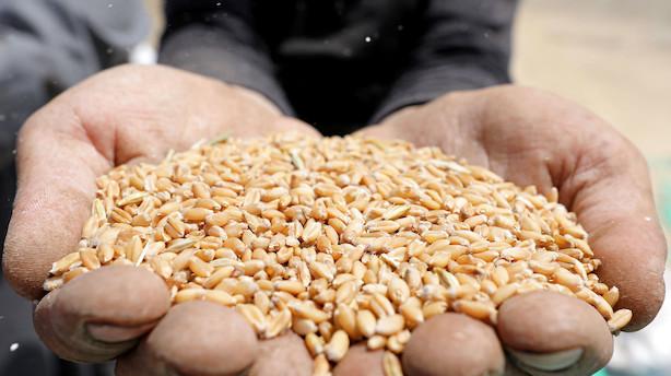 Kina fritager USA-varer for første toldløft - men ikke landbrug