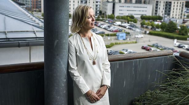 Erenbjerg freder Yousees tv-forretning efter salget af norske Get