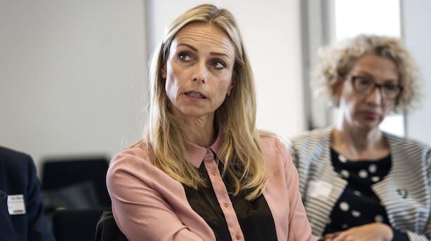 DSV vil have Google Danmark-boss i bestyrelsen