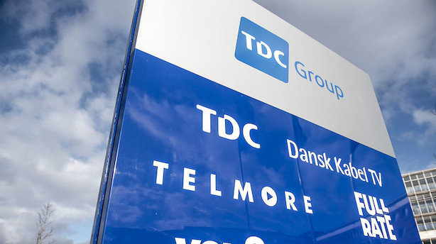 TDC-bestyrelse på plads - ny formand er midlertidig