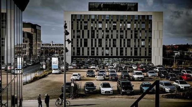 EY afviser overtrædelse af hvidvasklov ved Danske Bank-revision
