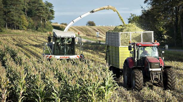 Bankernes tab på landbruget er mere end fordoblet på et år