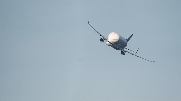 Aktien er eksploderet, men flyboss kalder et brexit uden aftale katastrofal