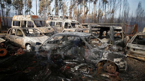 Sardinien kæmper mod naturbrande efter evakueringer