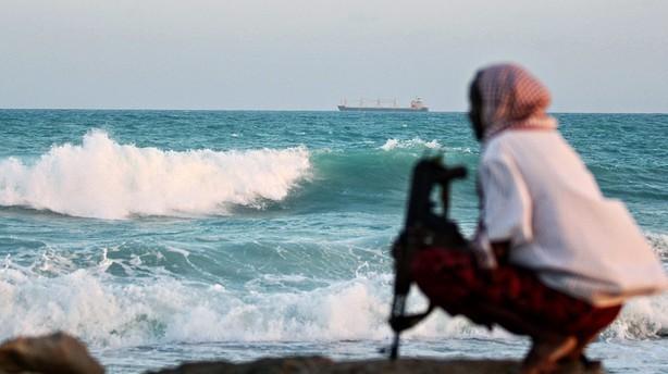 Pirater koster kunder ekstra 10 mia. kr. i 2012