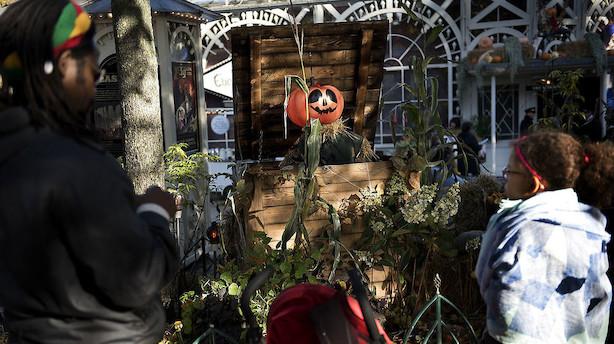 Tivoli opjusterer forventningerne efter bedre end ventet juleåbning