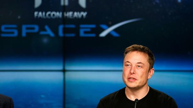 Tesla-spekulanter fastholder troen på kursfald i aktien