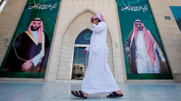 Over 100 mia dollar er stjålet, 208 saudier afhøres