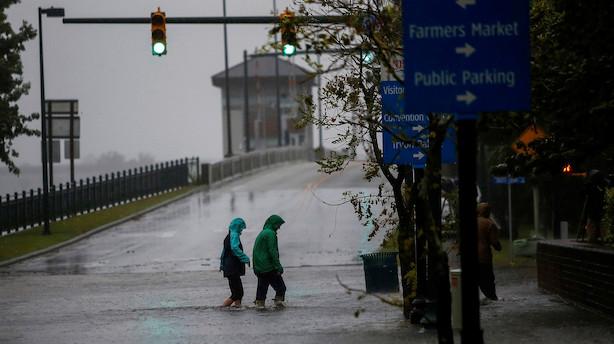 Orkan afblæser stor dag for Novozymes