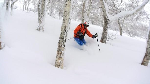 Offpiste i verdens bedste sne