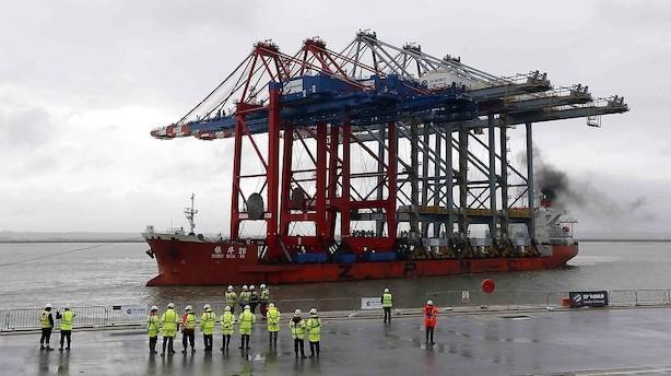 Mærsk: Havnerival venter at vokse mere end markedet efter jævnt 2016