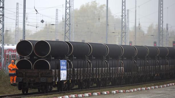 Omstridt russisk gasledning jagter ny rute forbi Danmark