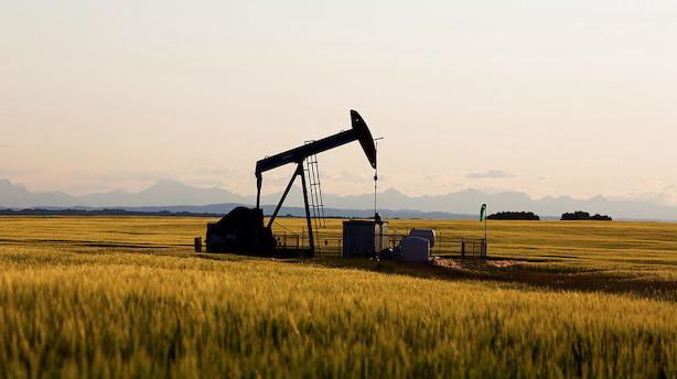 Råvarer: Olieprisen slår atter bak