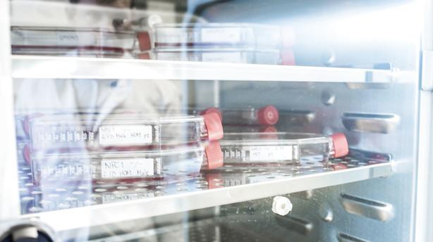 Orphazyme tildeles særbehandling af FDA for behandlingsmiddel til livstruende sygdom