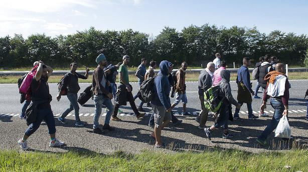 Flygtningestrøm slår kraftigt igennem i ny befolkningsprognose