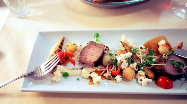 Madanmeldelse af Restaurant Ludwig (Hotel Propellen) fra pleasure.borsen.dk