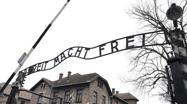Rekordmange besøger Auschwitz