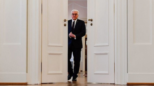 Tysk præsident: Tiden er ikke moden til nyvalg