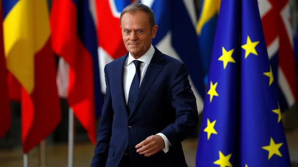 EU sætter kurs mod fremtidens forhold efter britisk exit