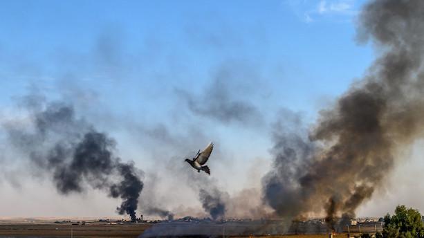 Europæere i FN's Sikkerhedsråd fordømmer tyrkisk offensiv