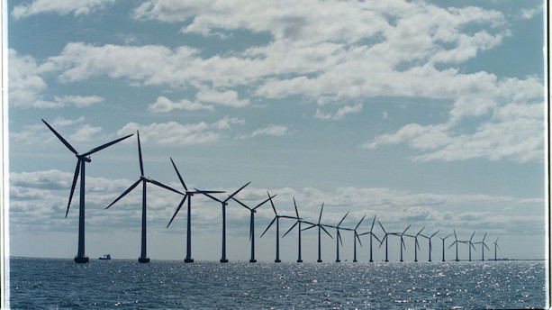 Industri jubler: Nordsøen kan blive Silicon Valley for havvind